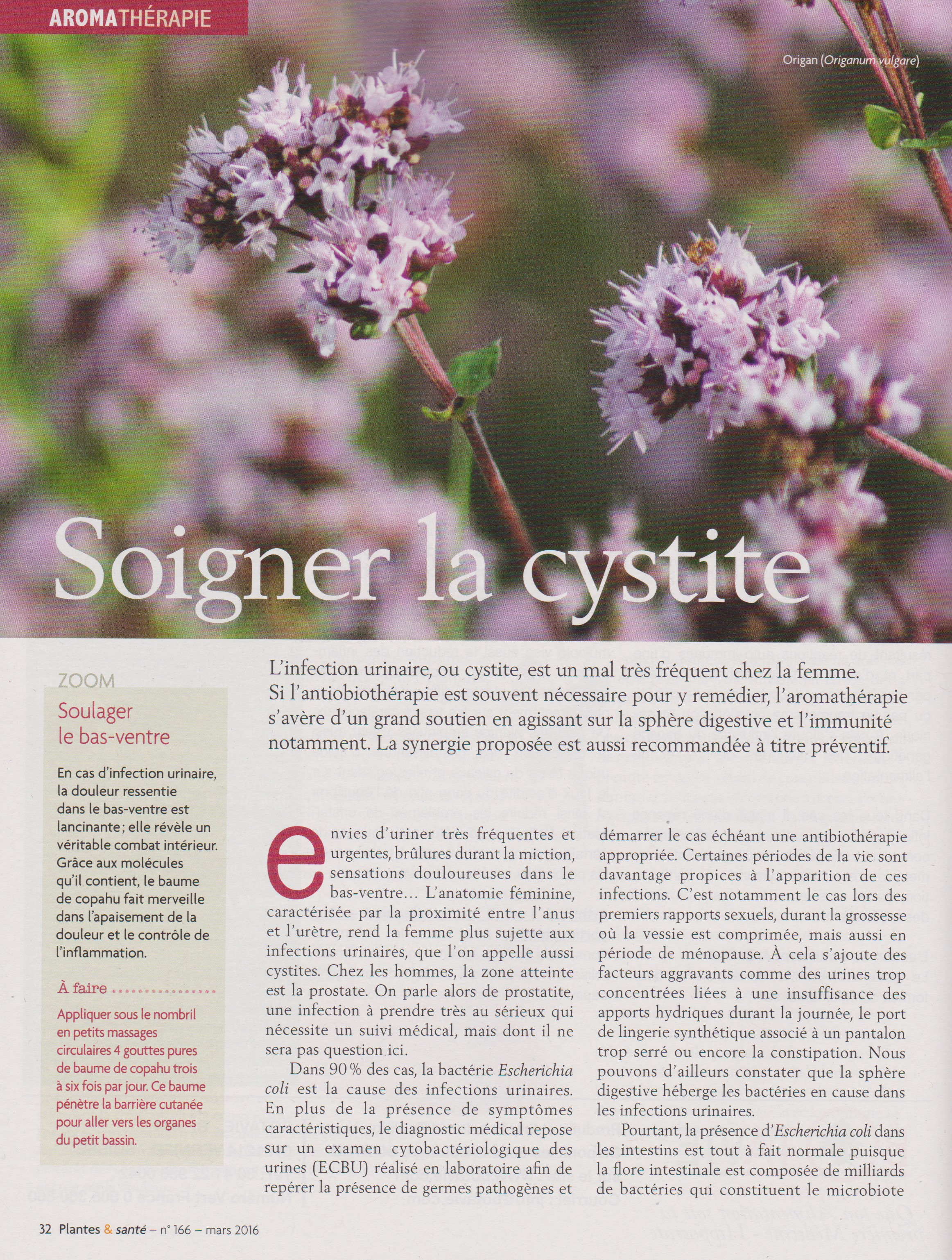 article cystite 1